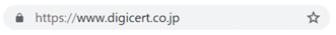 Google Chrome での表示(DV / OV 導入時のイメージ)